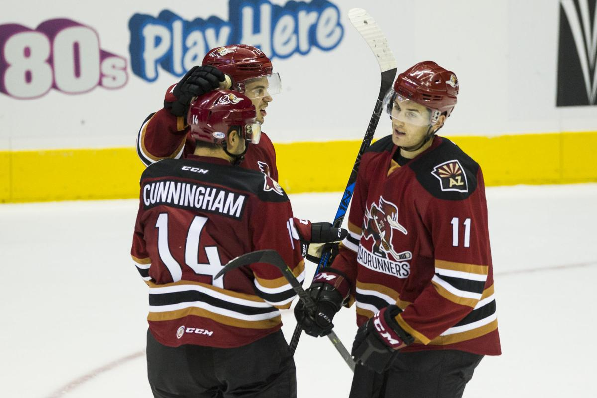 The Tucson Roadrunners celebrate after scoring a goal in the third period against the San Diego Gulls.