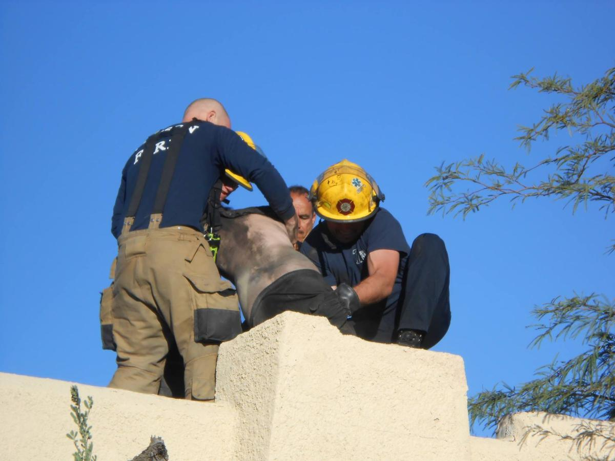 Naked Woman Rescued From Chimney - video dailymotion