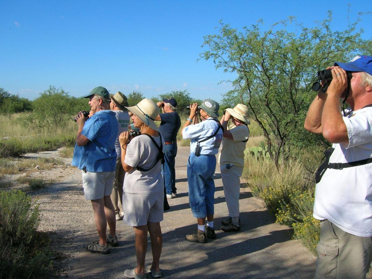 Birding Tour at Historic Canoa Ranch