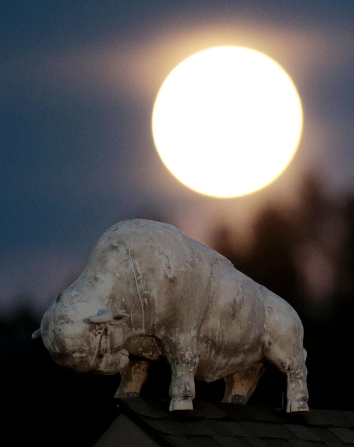 Pictures: Supermoon seen around the world - Orlando Sentinel