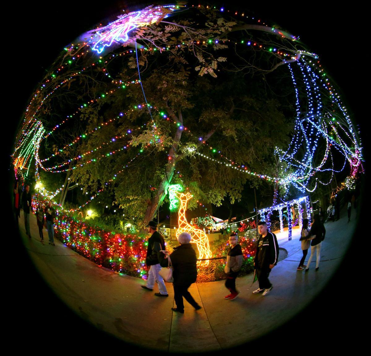 Beer Christmas Lights