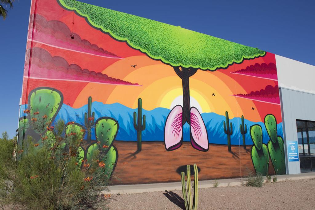 45 amazing Tucson murals and where to find them   tucson