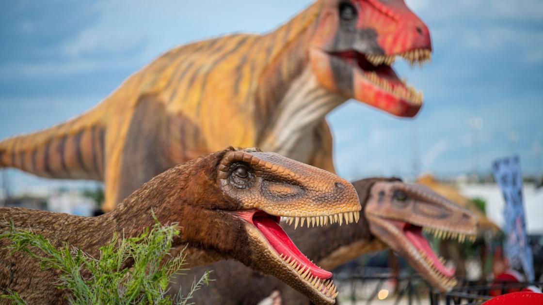 Dinosaurs rule as prehistoric drive-thru exhibit stops in Tucson