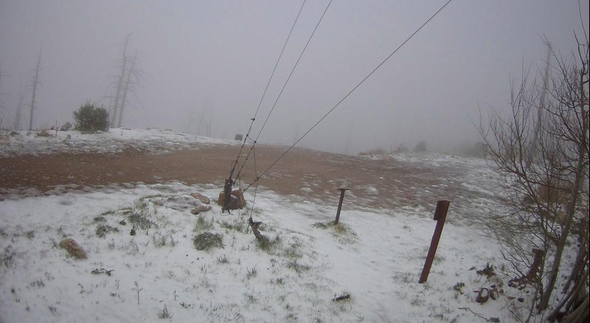 Snow on Mt. Lemmon