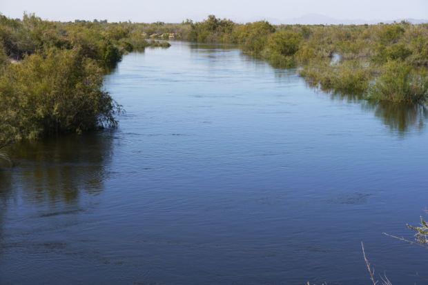 In Colorado River Delta, a surge of joy