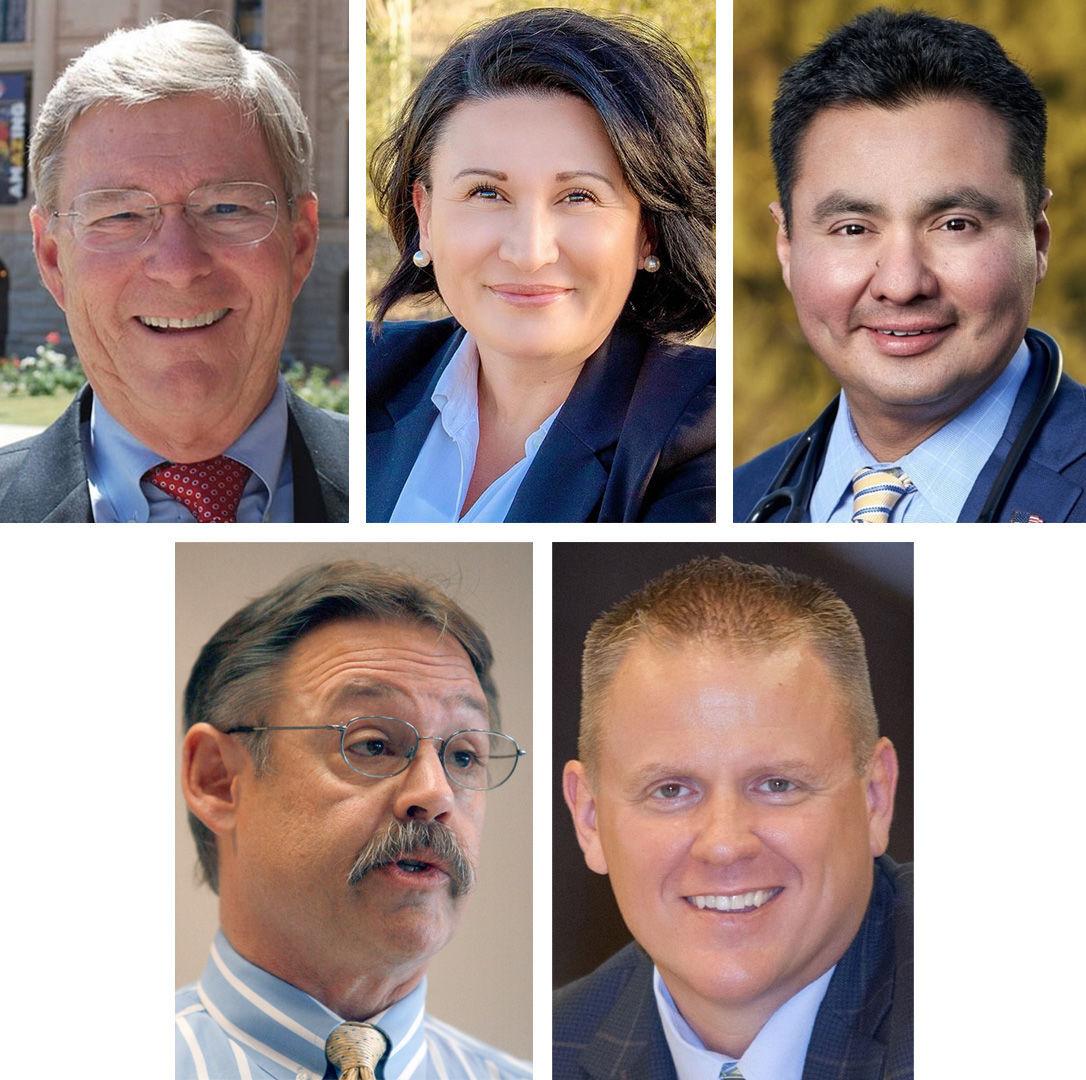 2020 Elections: Arizona LD 11