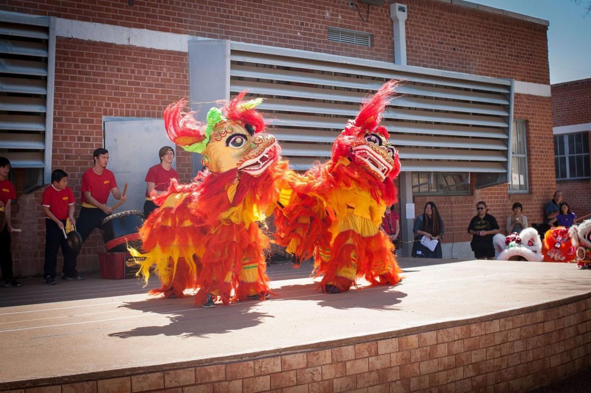 Annual International Day Festival — International School of Tucson