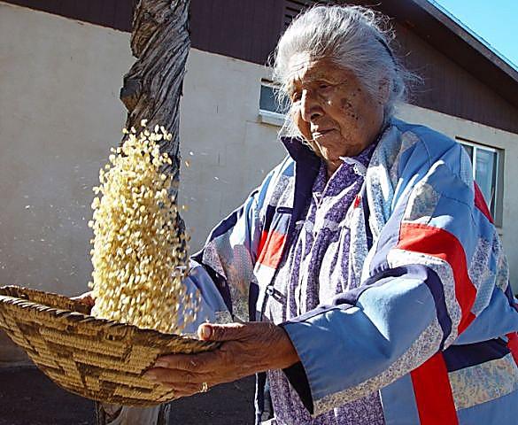 Tucson native american