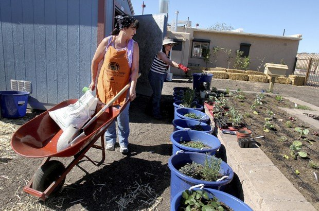 S. Tucson gets center teaching healthy eating, keeping slim