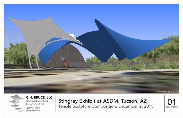 Stingrays coming to Desert Museum