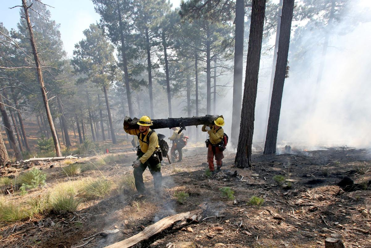 Mt. Bigelow prescribed burn