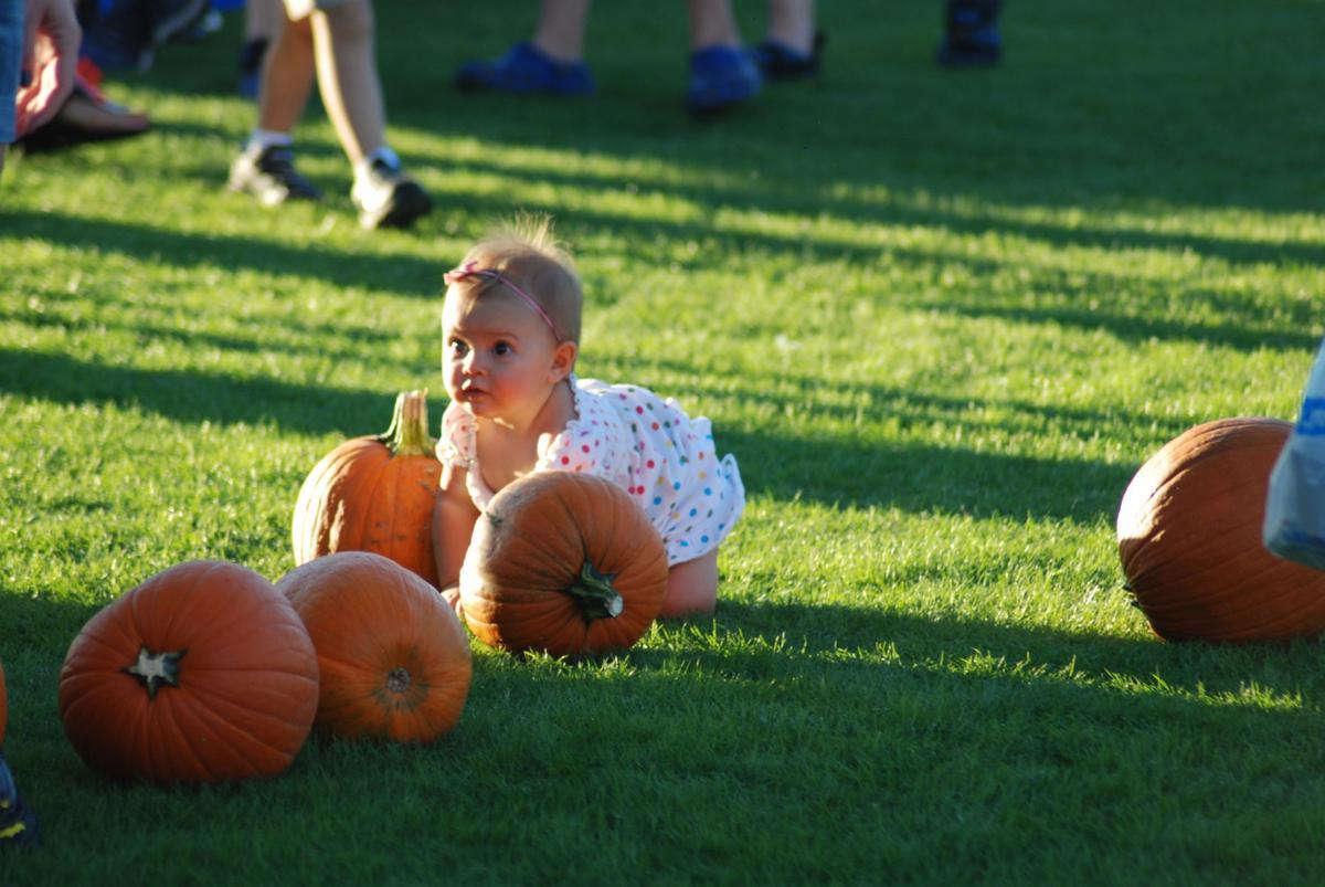 Oro Valley Monster Mash pumpkin