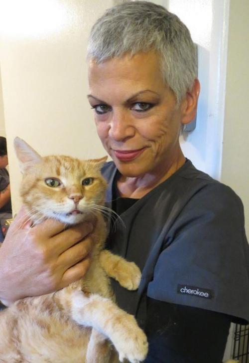 Florence Clark, Hermitage cat shelter