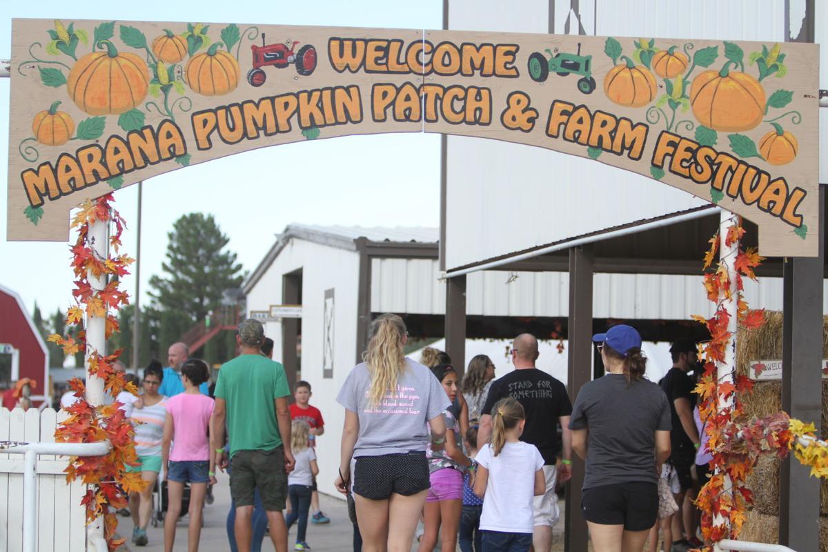 Marana Pumpkin Patch & Farm Festival 2016 Entrance