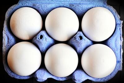egg-3506052_1280.jpg