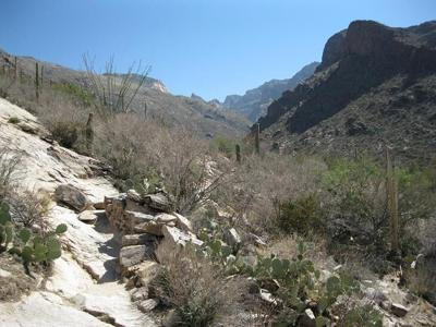 Pima_Canyon_Trail_Canyon_Mouth.jfif