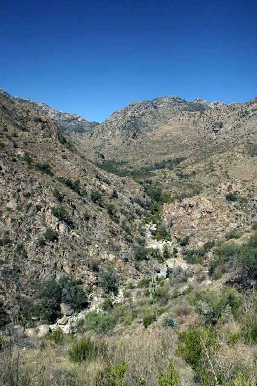 Hutch's Pool - Sabino Canyon