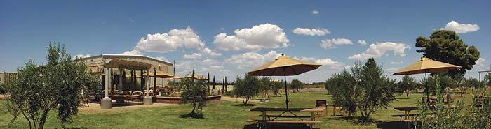 Arizona tastes of Tuscany