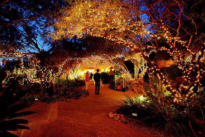 Holiday lights at Tohono Chul Park 1