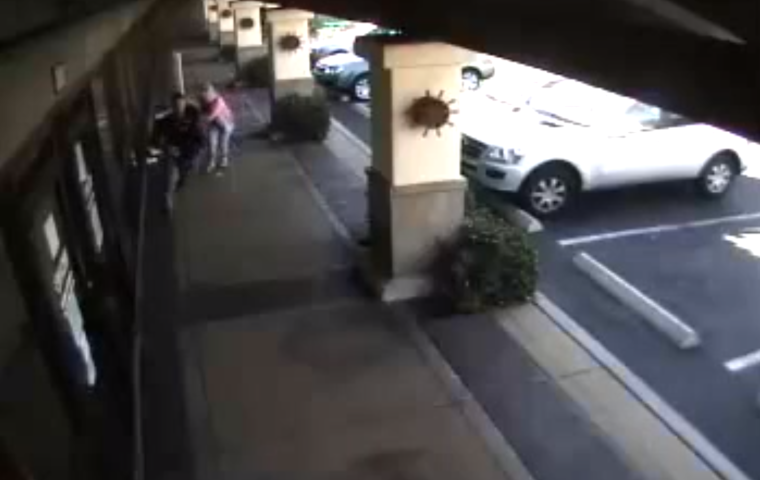 Man snatches woman's purse, but not without a fight