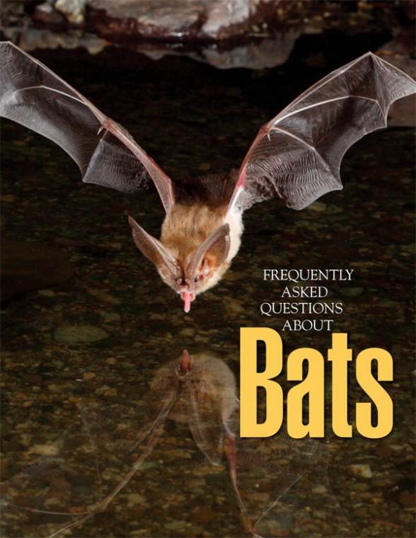 Bat book