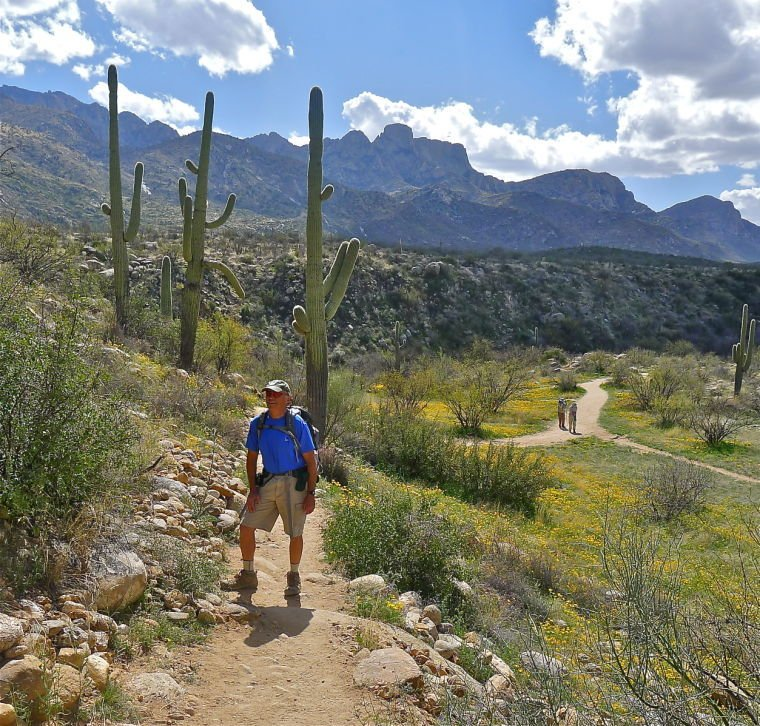 The views of Catalina State Park