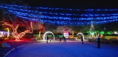 Zoo Lights.jpg