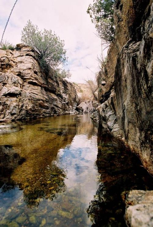 Rincon trek brings back memories