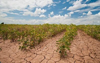 Western Drought