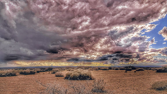 Desert moonsoon