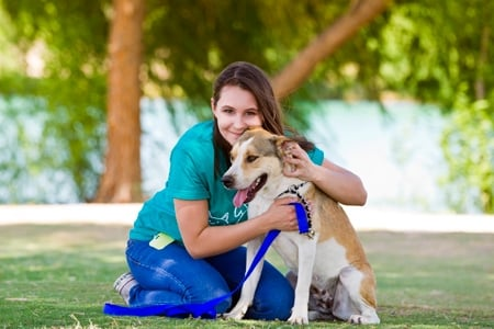 Pima Animal Care Center - dog