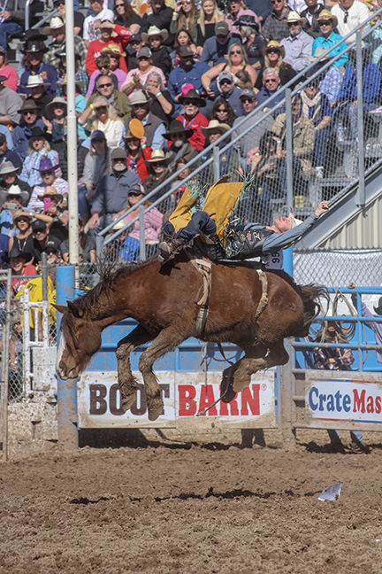 Rodeo 2019