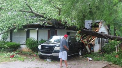 tree damages home