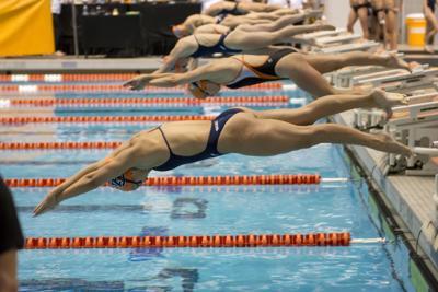 Swim/Dive - Texas/Auburn