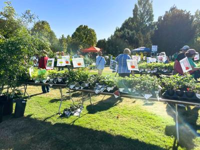 UT Plant Sale