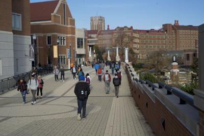 FILE: Campus Crowd