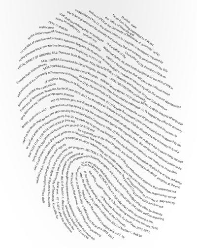 Diversity funding fingerprint