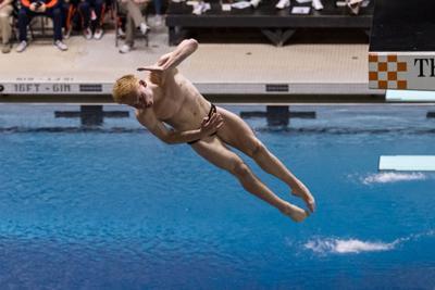 swim/dive story