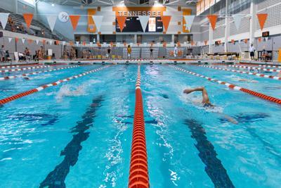 Swim/Dive - Orange and White