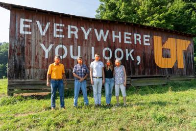 """""""Everywhere You Look, UT"""" mural campaign"""