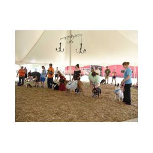Sevier County Fair