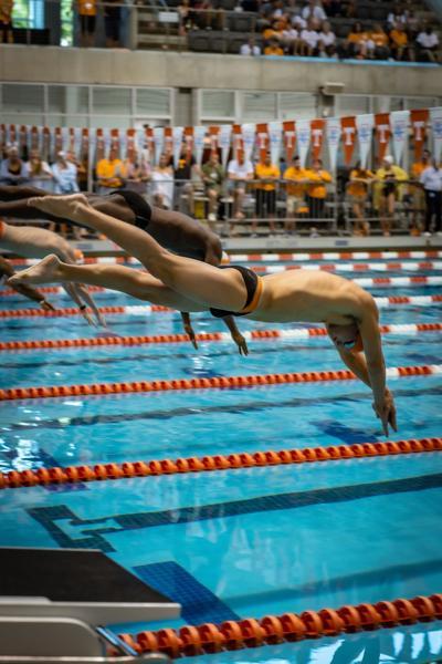 2019 Orange & White Intrasquad swim meet