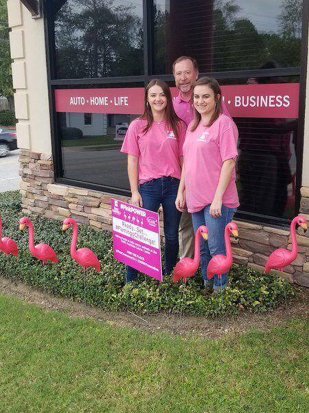 PinkPower, FlamingoChallenge kick off