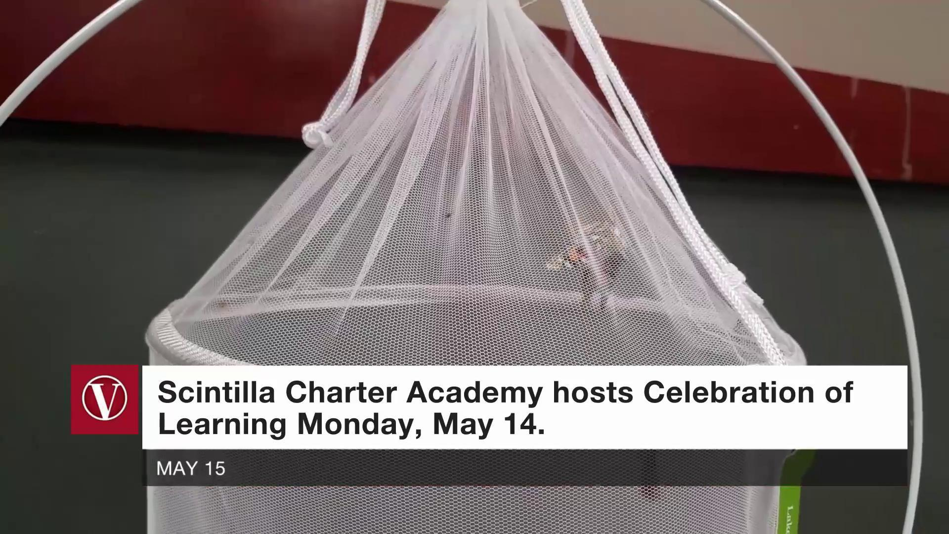 Scintilla Charter Academy held its Celebration of Learning Monday