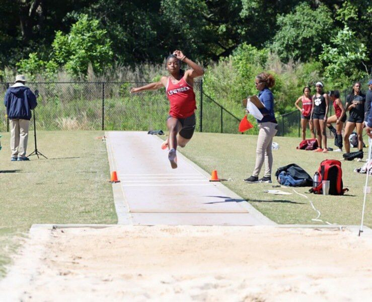Vikings perform well at state track meet