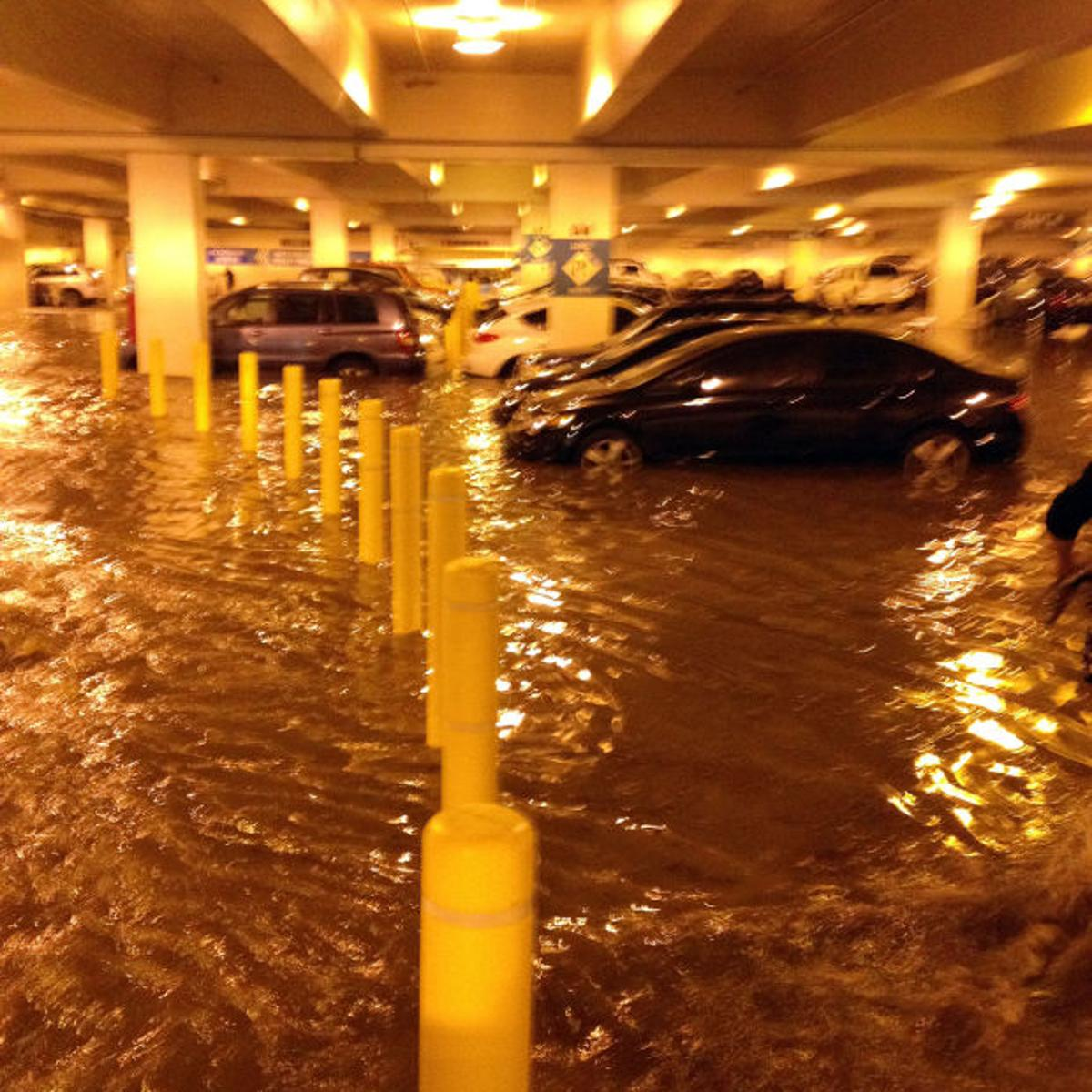 UCLA wades through damages from pipe flooding   National