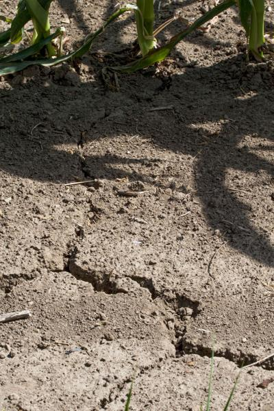 Iowa's drought outlook improves