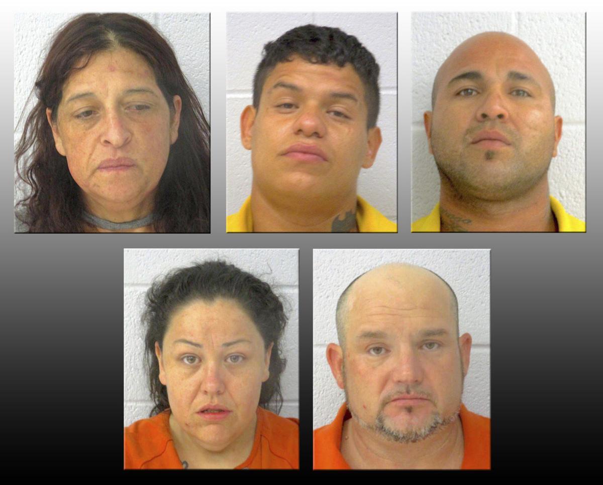 Vine murder arrests