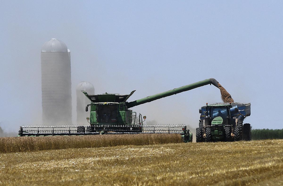 210914-news-harvest 1 BH.jpg