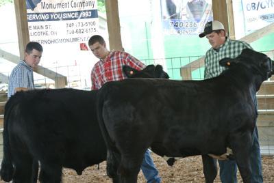 Jackson County Beef Bonanza
